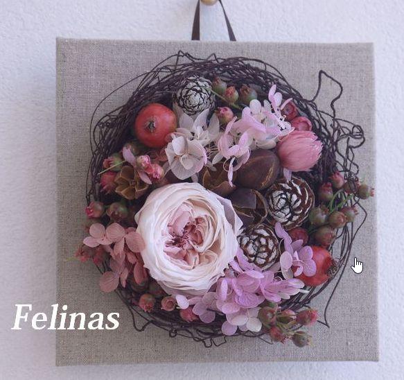 rose-flower1