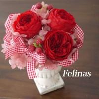 rose-flower5
